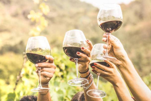 comment choisir le vin & comprendre son étiquette1