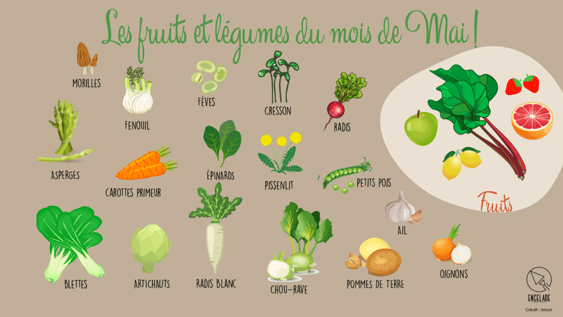 Les fruits et légumes du mois de Mai