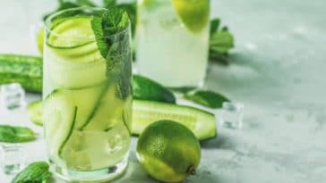 gin tonic concombre menthe