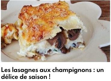 lasagnes champignons