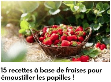 recettes fraises