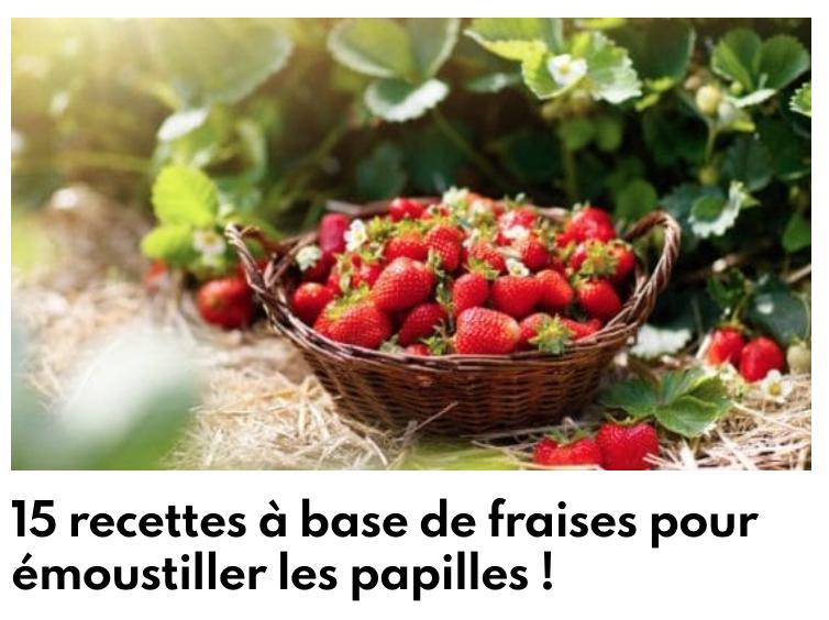 Recettes à bases de fraises