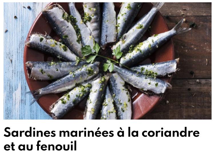Sardines marinée coriandre et fenouil