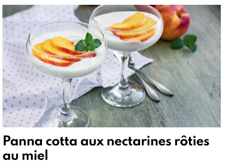 Panna cotta nectarine