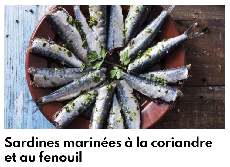 Sardines marinées à la coriandre